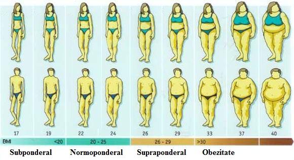 Cum să pierzi grăsimea corporală | keracalita-jaristea.ro