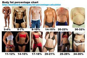 Cum de a reduce procentul de grăsime corporală - Confecție