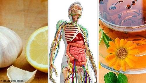 amchurul ajută la pierderea în greutate noblerex k1 pierdere în greutate