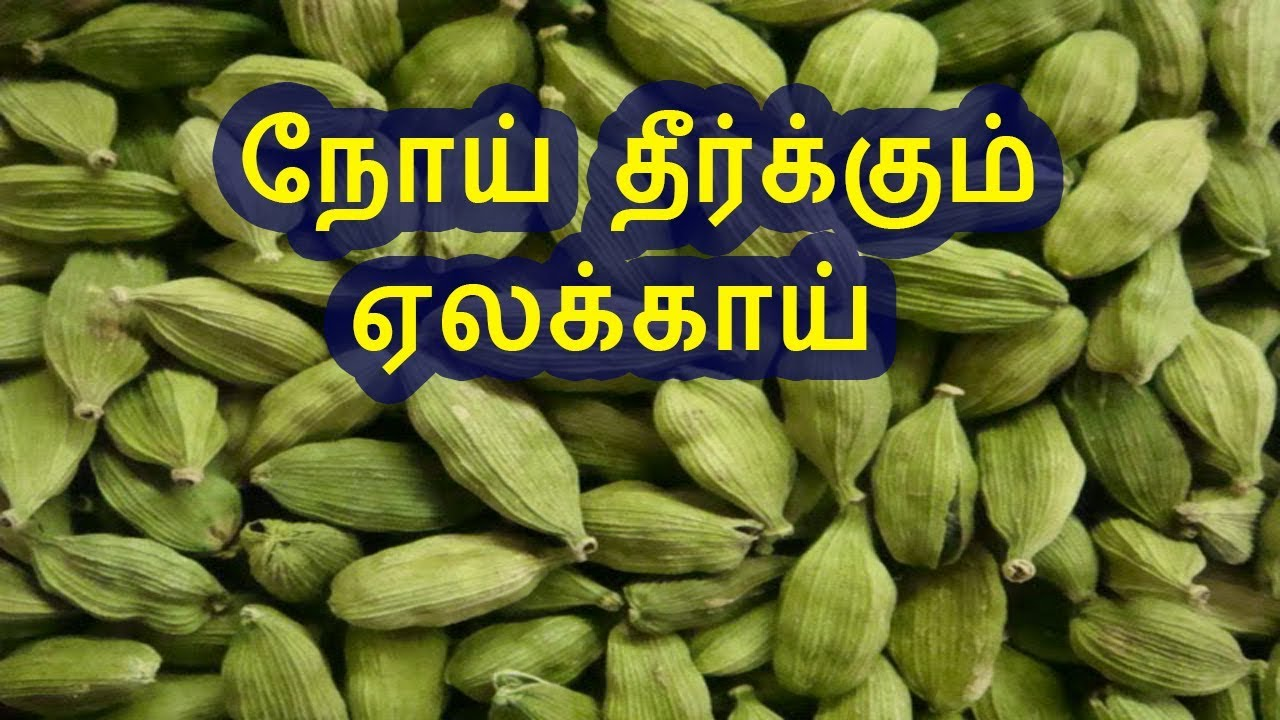 siddha vaithiyam pentru pierderea în greutate