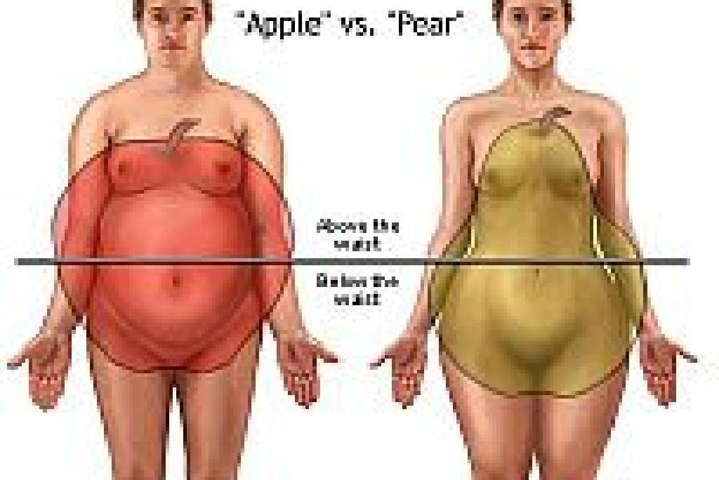 pierdere în greutate tj maxx