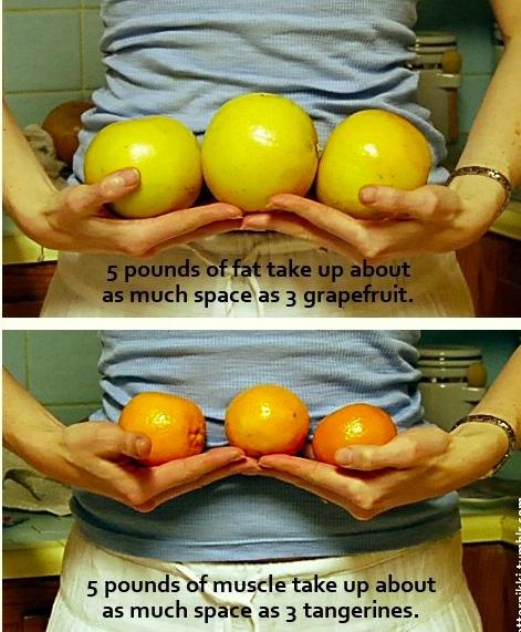 urmăriți pierderea de grăsime pierderea în greutate și estetica