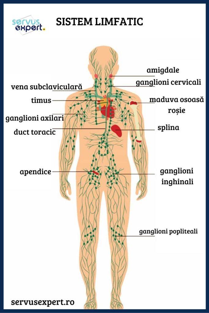 Inflamarea ganglionilor limfatici