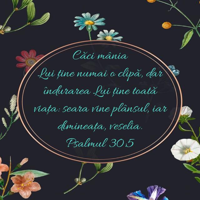 inspirație biblică pentru pierderea în greutate cum să arzi grăsimea în timp ce alăptezi