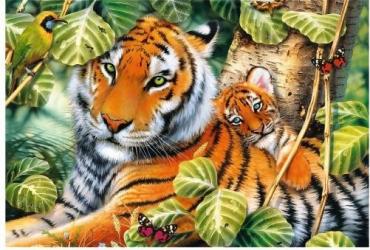 tigru balsam ars grasimi nina dobrev pierdere în greutate