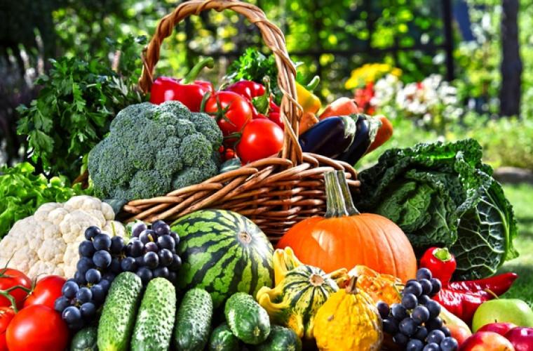 fapte morcov sănătate | keracalita-jaristea.ro