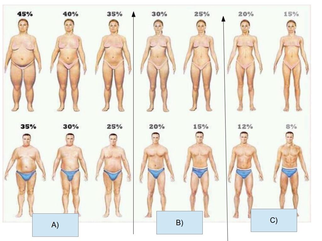 Cum 'arde' corpul grasimea?: Anumite zone retin grasimea mai usor. Cum o ardem?