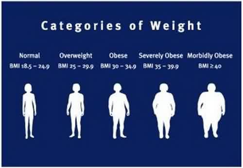 Sfaturi pentru pierderea în greutate punjabi efectele pierderii de grăsime
