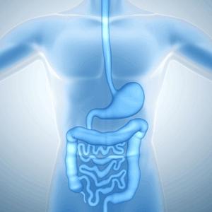 Anemia feripriva - simptome, tratament si prevenire   Bioclinica