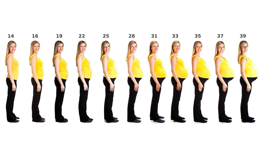 câtă greutate pierde în 6 săptămâni