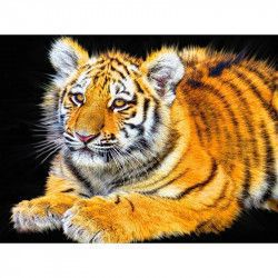 tigru balsam ars grasimi pierderea de grăsime și doză