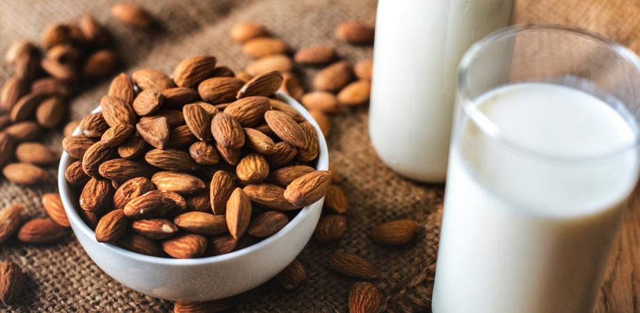 Ieșiți dintr-o dietă proteică. Cum să ieși dintr-o dietă și să nu câștigi în greutate