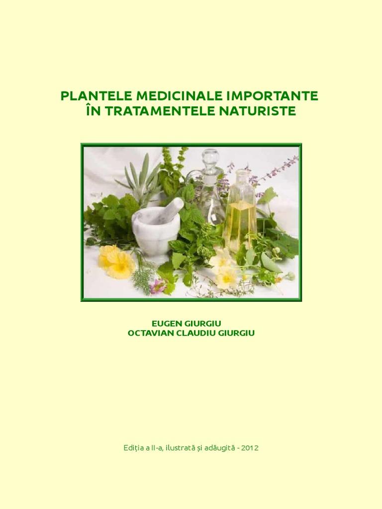 Proprietăți utile de urzică, utilizare, contraindicații, remedii populare.