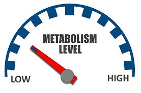 cea mai bună scară pentru a măsura pierderea în greutate este cafeaua ajută la pierderea în greutate