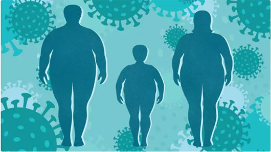 slăbește obezitatea scoate grăsimea din tocană de miel