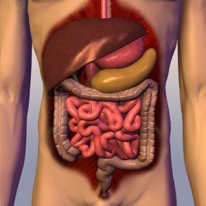 slăbit alberta sănătate oprirea pierderii în greutate venlafaxină