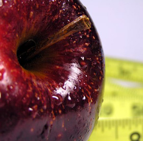cel mai bun supliment pentru pierderea în greutate și tăiere Pierderea în greutate tipică cu adderall