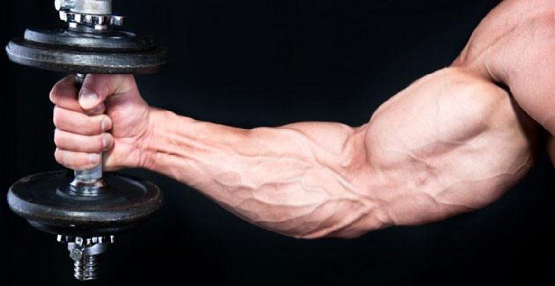 Exercițiile cu greutăți ard grăsimea mai repede decât exercițiile cardio?   Secretele Caloriilor