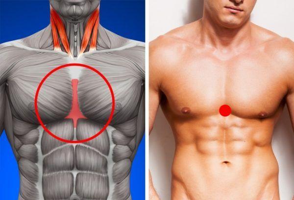 stimulează pierderea în greutate a metabolismului