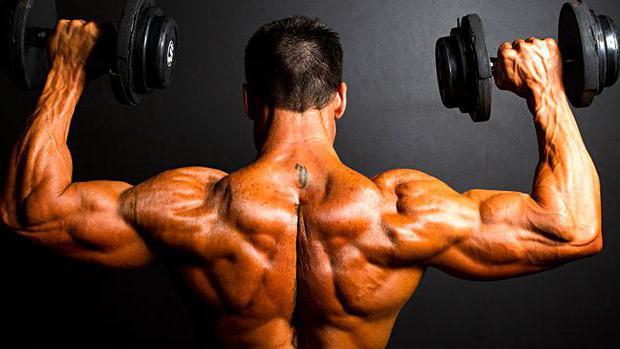 superset pentru pierderea în greutate greutăți de ardere a grăsimilor