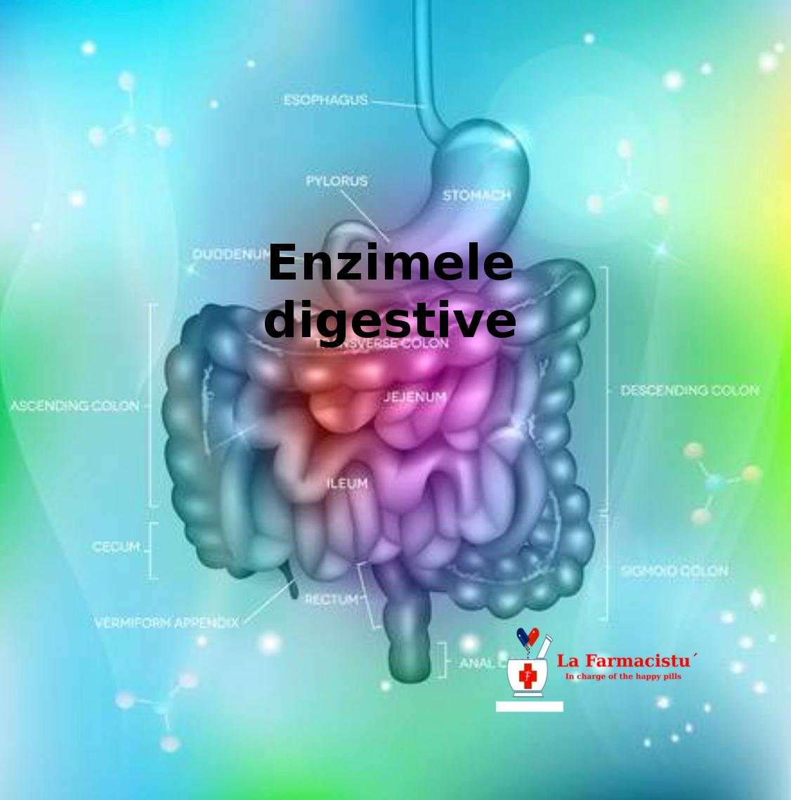 enzime de ardere a grăsimilor