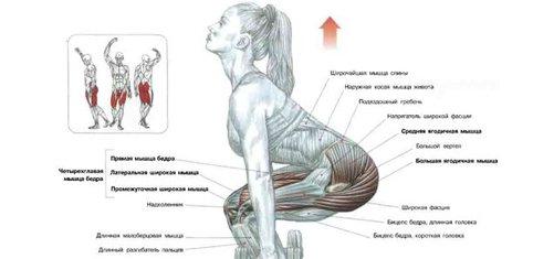 modul în care corpul tău își pierde grăsimea
