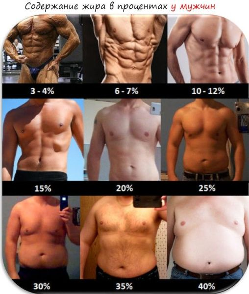 Scripturi de pierdere în greutate devoțională Pierdere în greutate de 20 de kilograme în 3 săptămâni