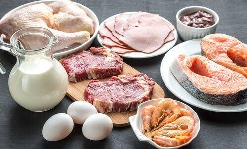 Pastila dieta populara un nou cum sa slabesti in 2 zile care sunt lista blocantilor de grasimi