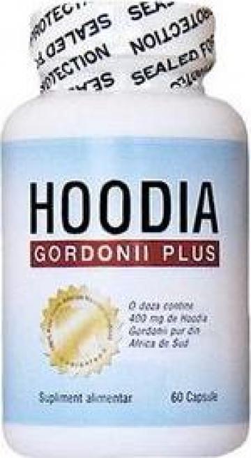 Cauti Hoodia Gordonii Plus - slabire cu reducerea poftei de mancare? Vezi oferta pe keracalita-jaristea.ro